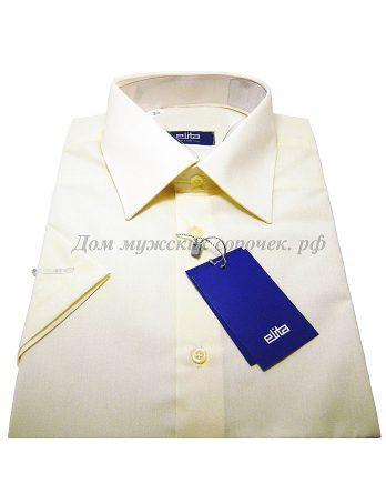 Мужская сорочка Elita, цвета шампанского, короткий рукав